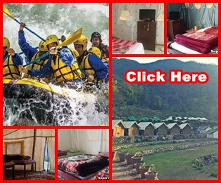 holiday camping tour packages