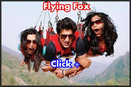 Fox activity rishikesh
