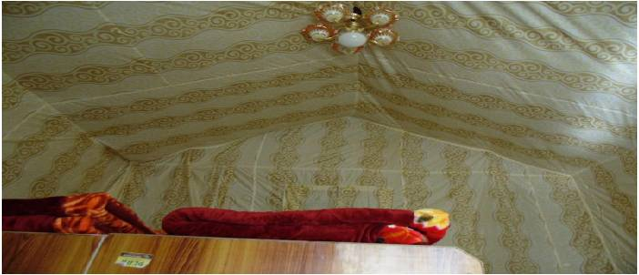 best-luxury-camp-in-rishikesh