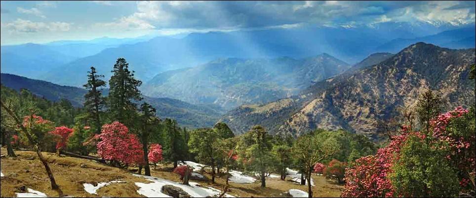 Nag Tibba Uttarakhand Trekking