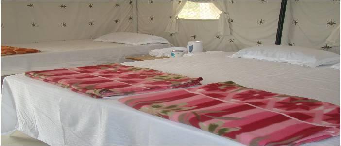 camping-trip-at-rishikesh