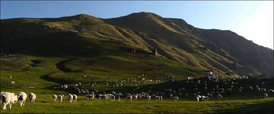 Bugyal Treks in Uttarakhand